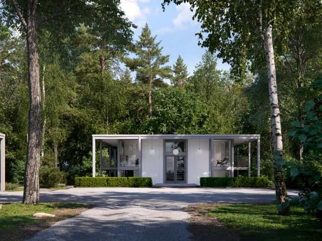Desilver house in the forest visualization